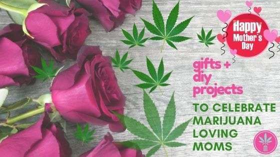 Roses and marijuana leaves, title card for Marijuana Mother's Day