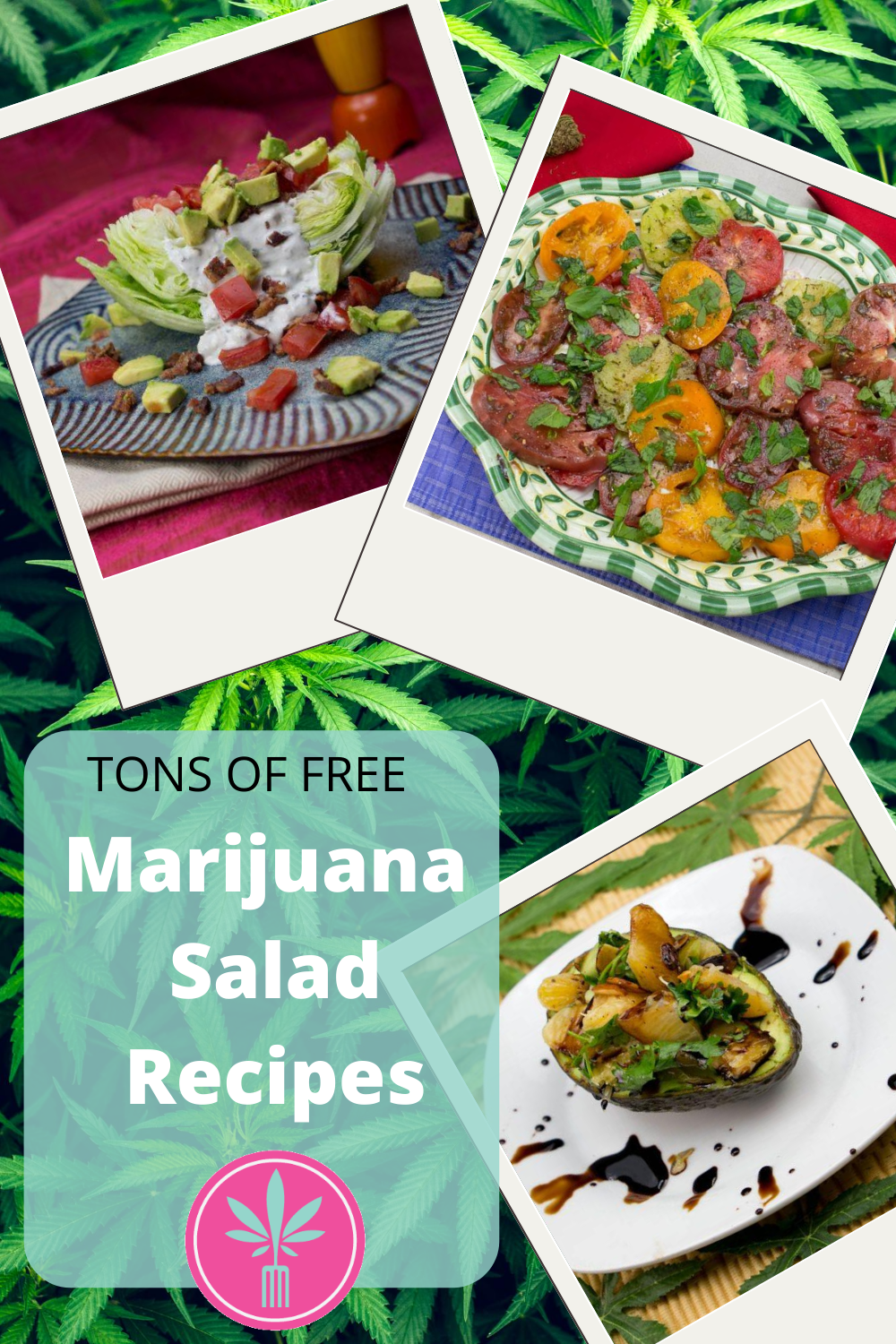 Cannabis Infused Salads and Salad Sressings