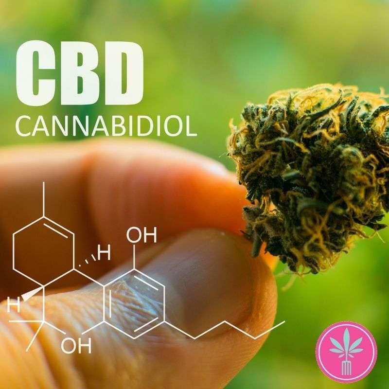 Estimating CBD Percentages in Cannabis