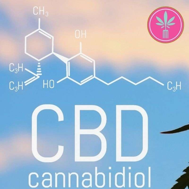 CBD use and liver toxicity title card