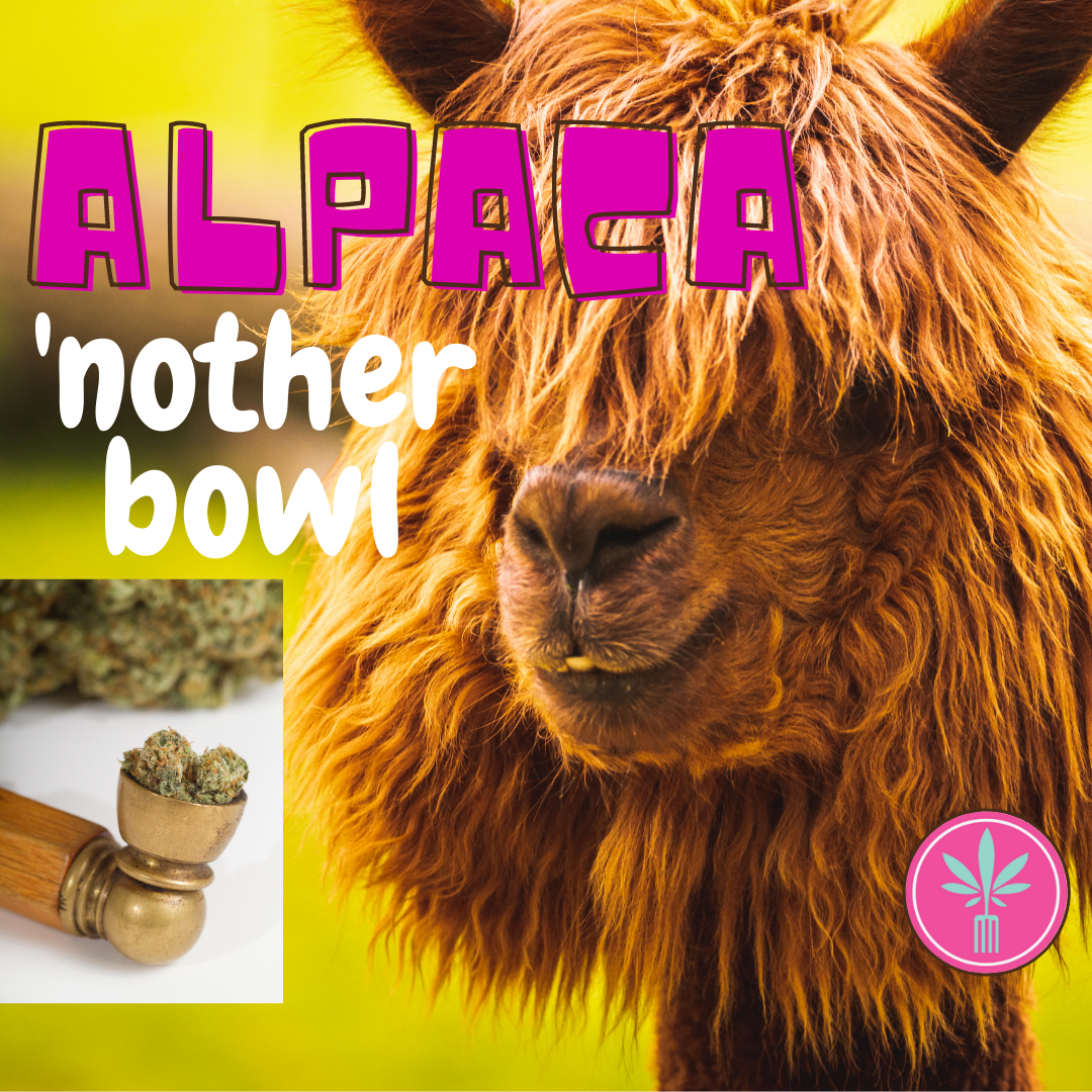 Meme: Alpaca 'Nother Bowl